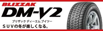 タイヤショップ アップルクラブ BLIZZAK DM-V2 タイヤ激安販売 岐阜県 岐阜市